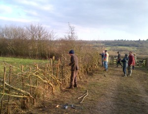 Hedgelaying Workshop